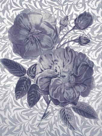 Flores de Oro - Indigo