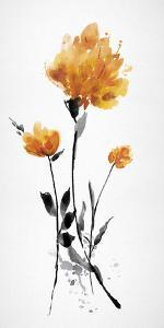 Floret Blush III by Tania Bello
