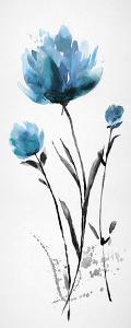 Floret Blush IV by Tania Bello