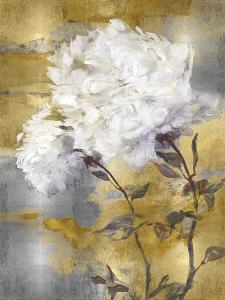 Glimmer by Tania Bello
