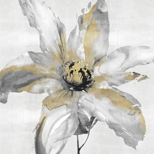 Gold-hearted Flower by Tania Bello