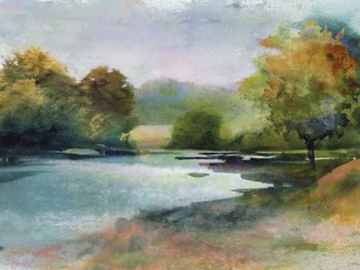 Lacu II by Tania Bello
