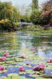 Lotus Lake by Tania Bello