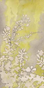 Moonlight Glow Flowers II by Tania Bello