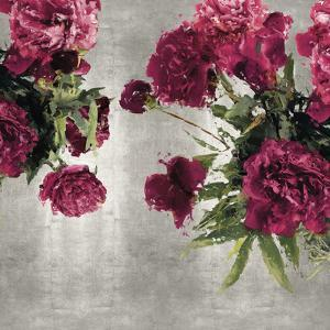 Pearly Peonies by Tania Bello