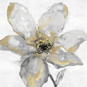 Petals and Gold by Tania Bello