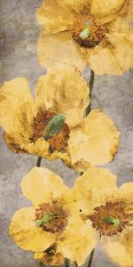 Poppy Radiance I by Tania Bello