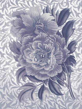 Rosa Dorada - Indigo