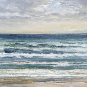 Seascape Skies by Tania Bello