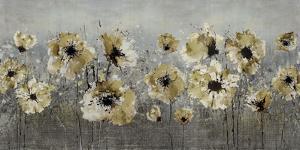 Silver Spring by Tania Bello