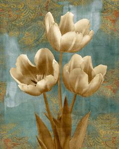 Tulip II by Tania Bello