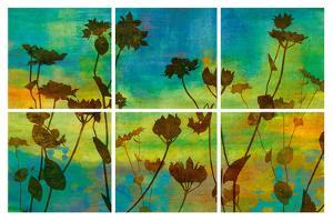 Wild Flowers I by Tania Bello