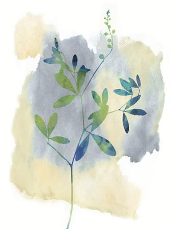 Wildflower Symphony by Tania Bello