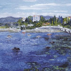 Le Petit Port a Antibes by Tania Forgione