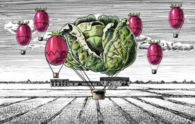 Italian Food with Landscape by tannene