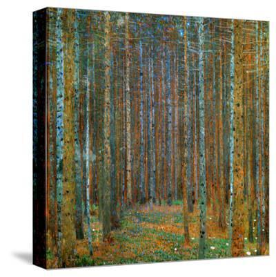 Tannenwald (Pine Forest), c.1902-Gustav Klimt-Stretched Canvas Print