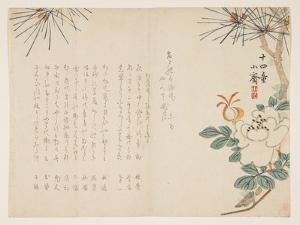Pine and a Peony Flower, 1860 by Tanomura Sh?sai
