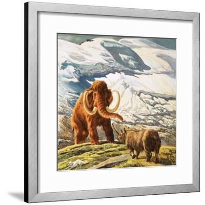 Mammoth Meets Rhinocerous