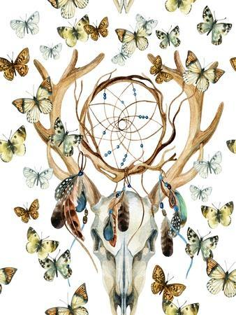 Animal Skull with Dreamcather and Butterfly