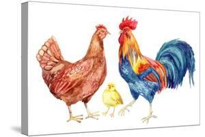 Watercolor Chicken Family - Hen Rooster Chicken. Hand Painted Illustration by tanycya