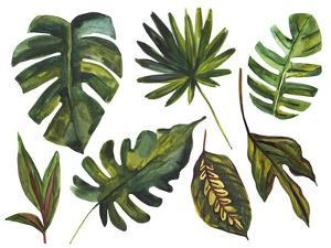 Watercolor Tropical Leaf Set by tanycya