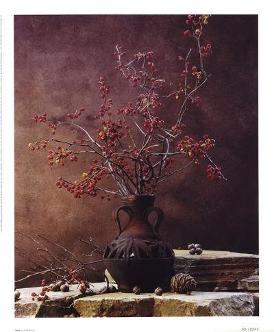 Taos-Fred Wood-Art Print