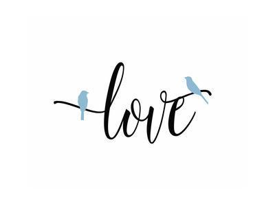 Love Blue Birds
