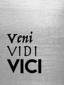 Veni Vidi Vici by Tara Moss