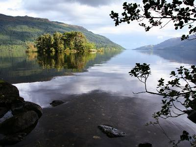Tarbet Isle on Loch Lomond, Loch Lomond and the Trossachs National Park-Feargus Cooney-Photographic Print