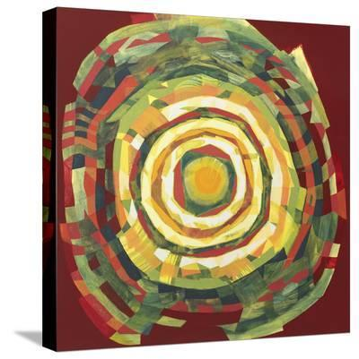 Target II-Nino Mustica-Stretched Canvas Print