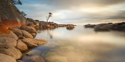 Tasmania, Australia. Binalong Bay, Bay of Fires at Sunrise-Matteo Colombo-Photographic Print