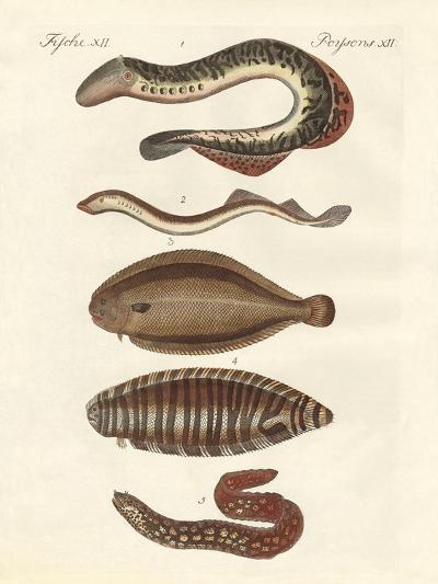 Tasty Fish--Giclee Print