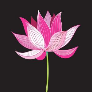 Beautiful Lotus Flower by Tatiana Korchemkina