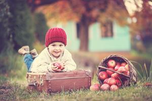 Apple Season by Tatyana Tomsickova