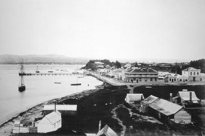 Tauranga, Bay of Plenty, North Island, New Zealand, 1875--Giclee Print