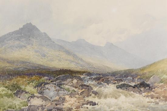 Tavy Cleave, Dartmoor , C.1895-96-Frederick John Widgery-Giclee Print
