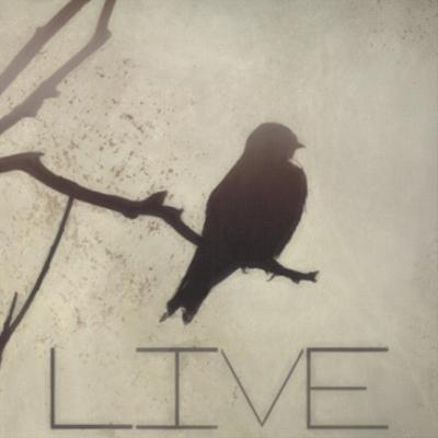 Live Silhouette by Taylor Greene