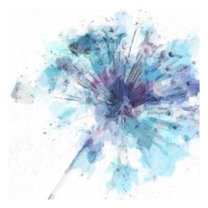 Modern Bloom II by Taylor Greene
