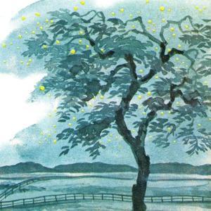 Midsummer Magic - Jack & Jill by Taylor Oughton