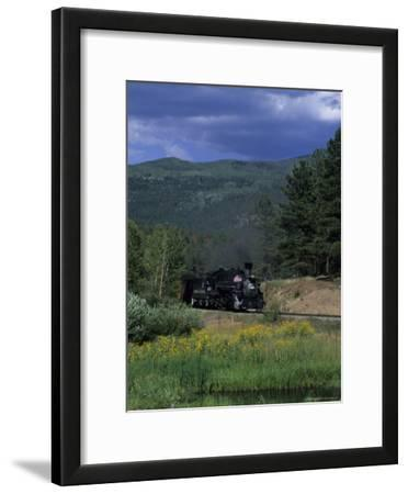 A Steam Engine Chugs Through a Valley Near a Field of Wildflowers, Silverton, Colorado