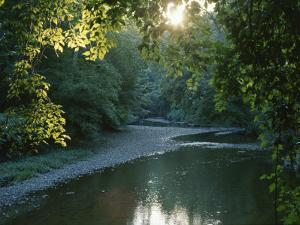 A Sunset View of Rock Creek in Rock Creek Park by Taylor S. Kennedy