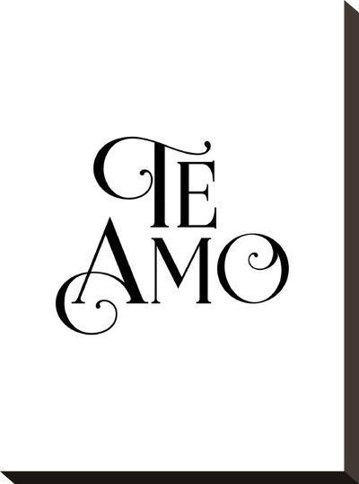 Te Amo-Brett Wilson-Stretched Canvas Print