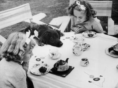 Tea Party--Photographic Print