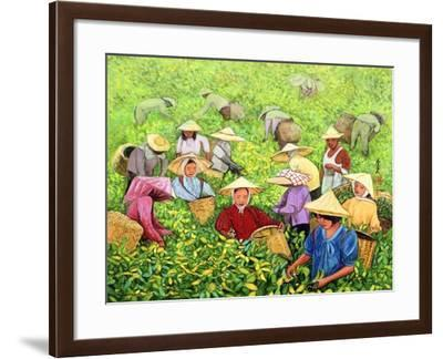 Tea Picking Girl, 1994-Komi Chen-Framed Giclee Print