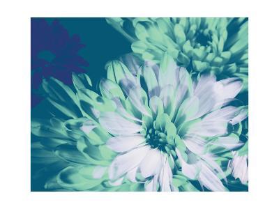Teal Bloom II-A. Project-Art Print