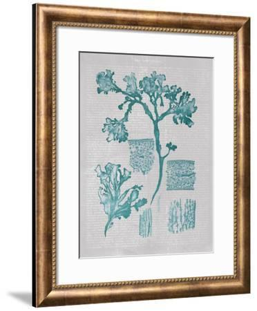 Teal Coral I-Jennifer Goldberger-Framed Art Print