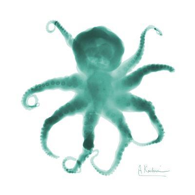 Teal Octopus-Albert Koetsier-Art Print