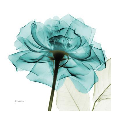 https://imgc.artprintimages.com/img/print/teal-rose_u-l-f5lu0y0.jpg?p=0