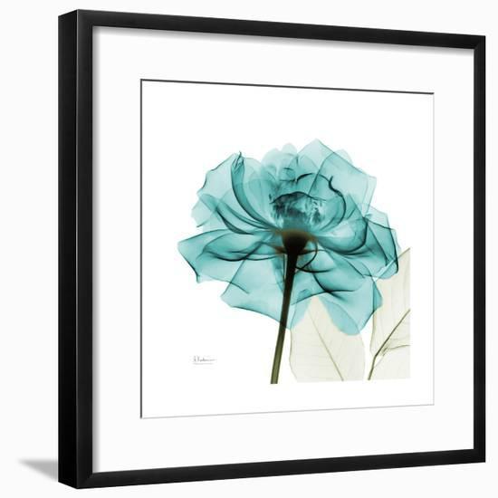 Teal Rose-Albert Koetsier-Framed Art Print