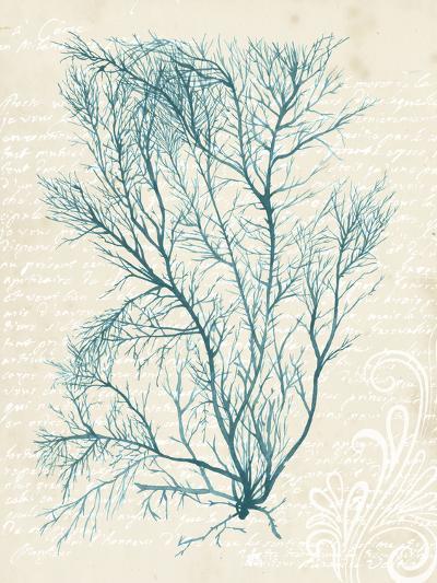 Teal Seaweed II-Grace Popp-Art Print